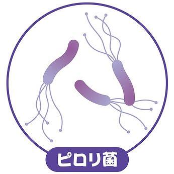 胃カメラではピロリ菌検査が可能